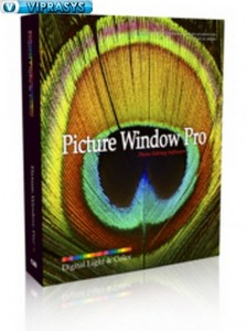 Digital Light and Color Picture Windows Pro 32x64 bit