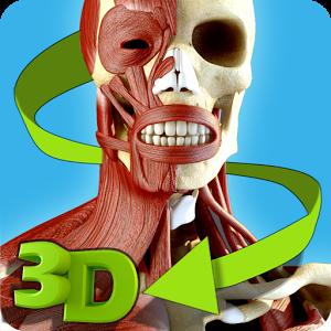 Easy Anatomy 3D Apk Full
