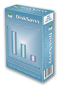 disksavvy_box