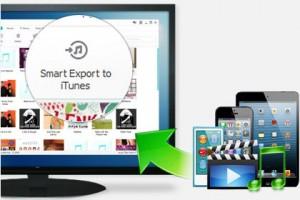 export-media-windows