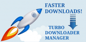 Turbo Downloader Manager
