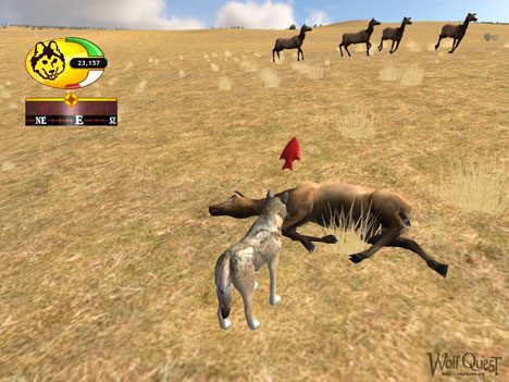 WolfQuest 2.5.1 PC | Full Oyunlar