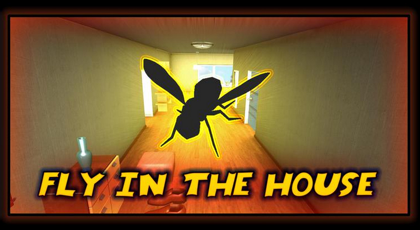 flyinthehouse_cover1