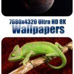 8K Ultra HD Karışık Wallpapers İndir Paket 3