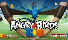angry-birds-rio-hd-wallpaper-image-tablet