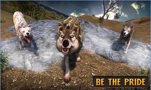 wolf-life-simulation-20172