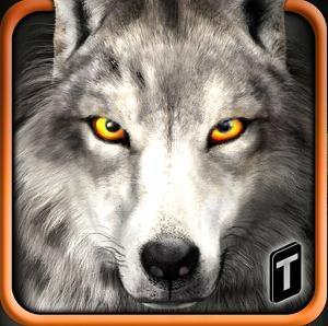 wolf-life-simulation-20173