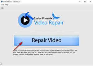 Digital Video Repair (2)